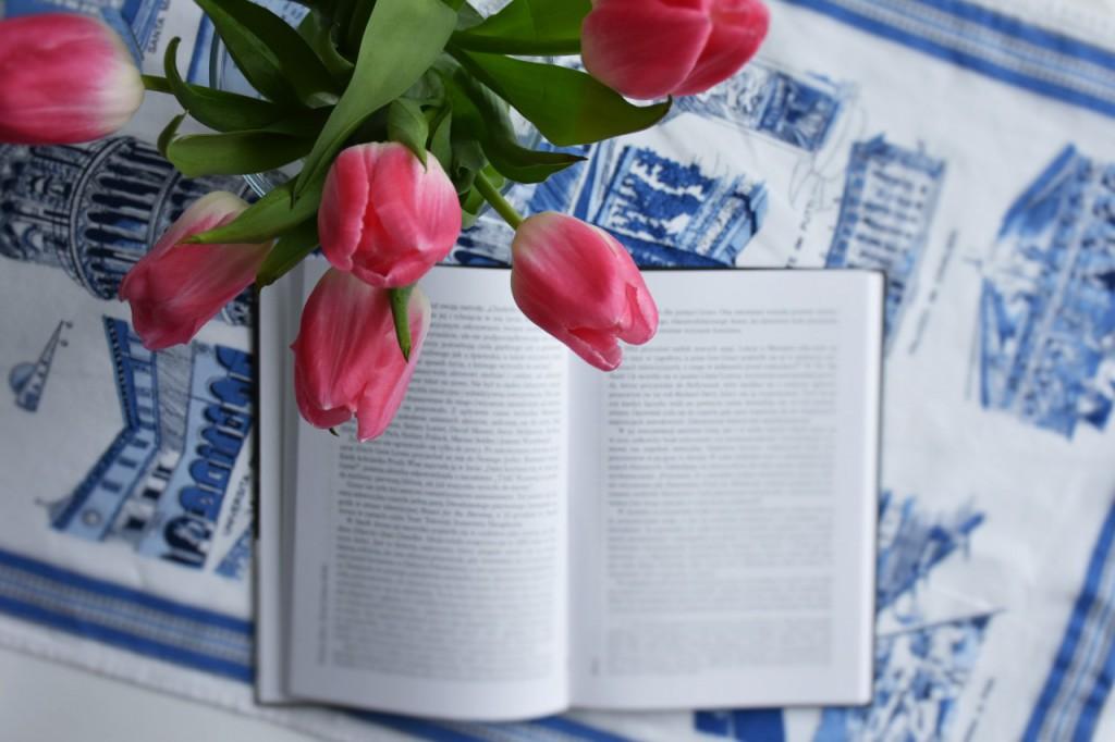 czytanie książek2