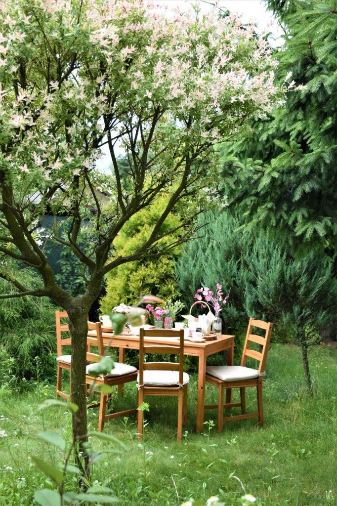 ogrod 2 isnpiracja ania zając