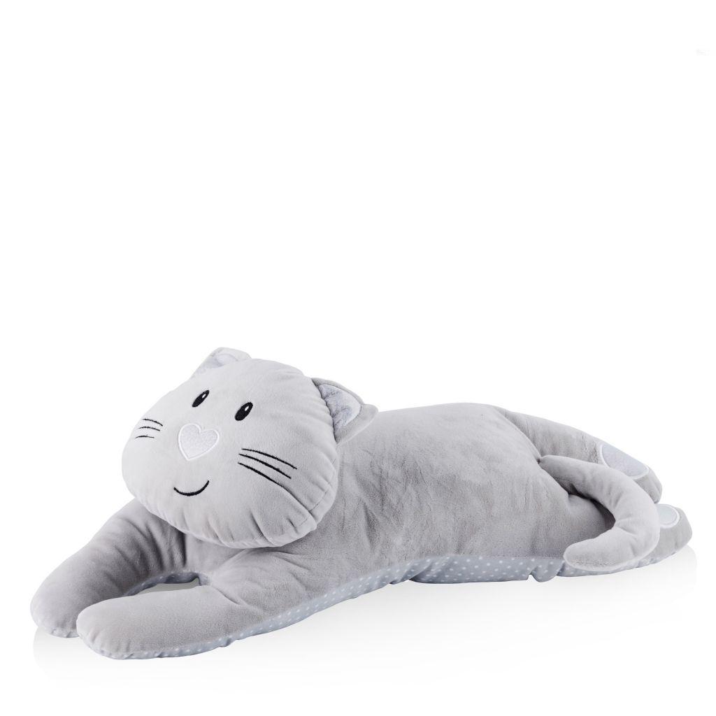 kot poduszka